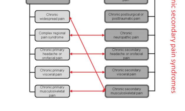 Douleur chronique en 2019 : du changement dans les classifications