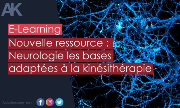 Nouvelle ressource en E-Learning : Neurologie les bases !